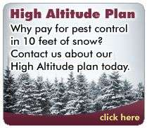 Why pay for pest control in 10 feet of snow?  Contact us about our High Altitude plan today.