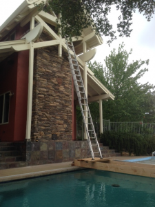 Here is a photo of a ladder setup our technician, David Katosic (aka DK), created to access and stop a bat infestation situated over a swimming pool.