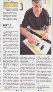 Union Democrat article on Prionus beetles