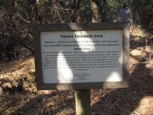 Nature Easement Area of Greenhorn Creek.