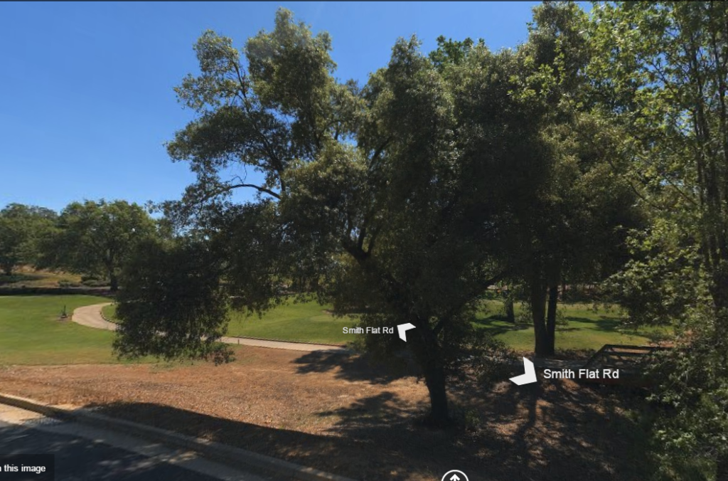 The golf course live oak on 2 April 2015. Bing Street View.