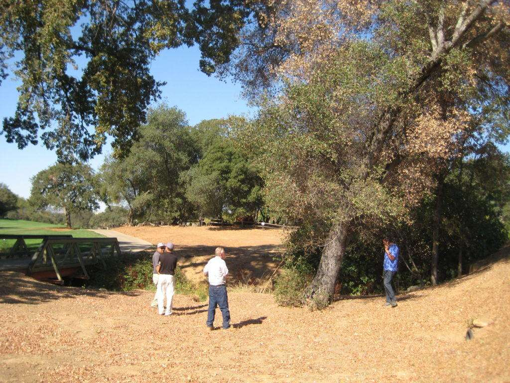 Dying live oak at Greenhorn Creek, with Allan Ramorini, Paul Cooper, and Scott Oneto. 28 September 2016